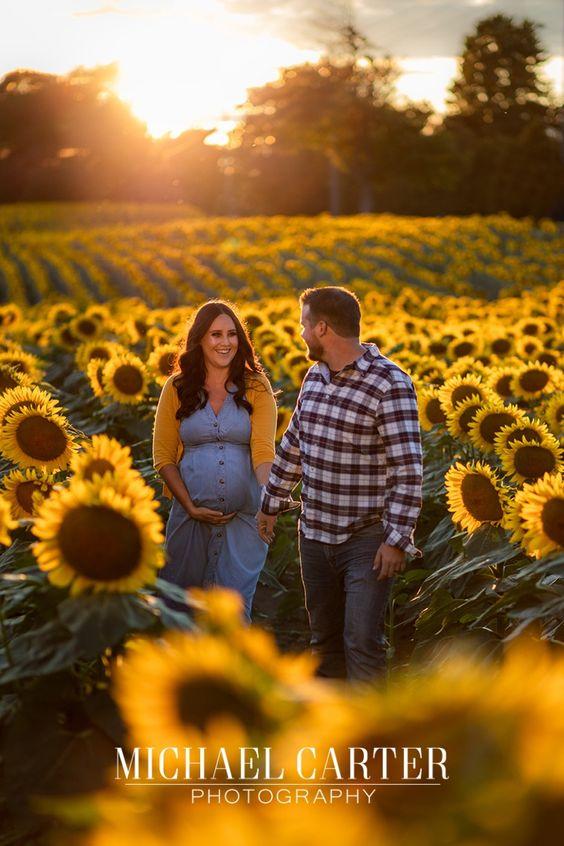 Sunflower field pregnancy announcement